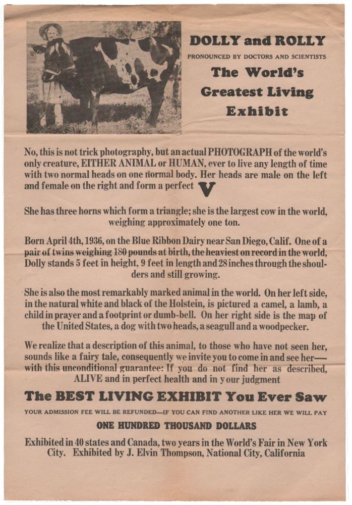 Dolly and Rolly, Pronounced by Doctors and Scientists The World's Greatest Living Exhibit. Two-Headed Cow Broadside.