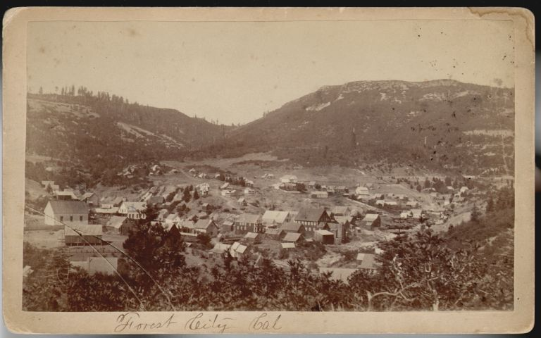 Rare Photograph of the Mining Town of Forest City, California, Before it was Destroyed by Fire in 1883