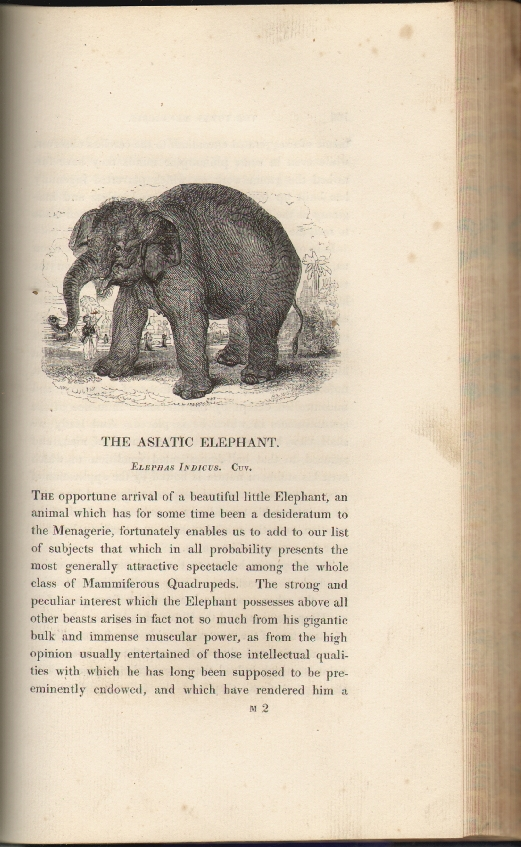 The Tower Menagerie: Comprising the Natural History of the Animals Contained in That Establishment with Anecdotes of Their Characters and History. William Harvey, Branston and Wright.
