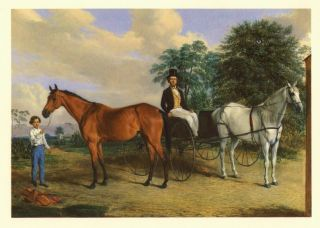 The Race Horses of America 1832-1872, Portraits and Other Paintings by Edward Troye