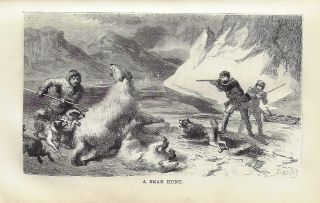 The Open Polar Sea, A Narrative of a Voyage of Discovery Towards the North Pole