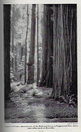 Bound Collection of Fifteen Publications Regarding the Preservation of the Coastal Redwood...