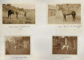 Photograph Albums of Major Pascoe William Grenfell Stuart-French, Documenting Cricket Matches, Horse Breeding, Fox Hunting, and other Sporting Activities in England and Ireland, 1901-1928