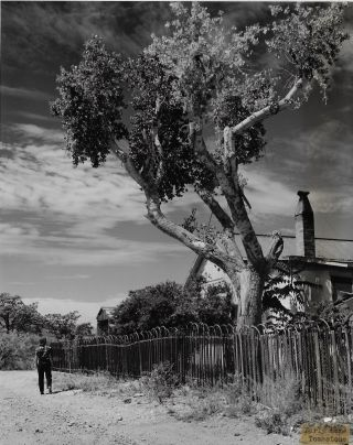 Album of Stunning Photographs of People and Places in Arizona by Chuck Abbott, Esther Henderson, and other Arizona Highways Photographers, ca. 1938-1950