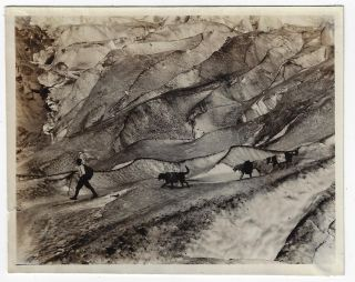 """Collection of 15 Photographs of or by Father Bernard Hubbard, """"The Glacier Priest"""""""