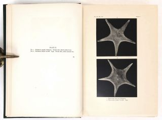 Harriman Alaska Series Volume XIV, Part 1 (text) and Part 2 (plates). Monograph of the Shallow-water Starfishes of the North Pacific Coast from the Arctic Ocean to California