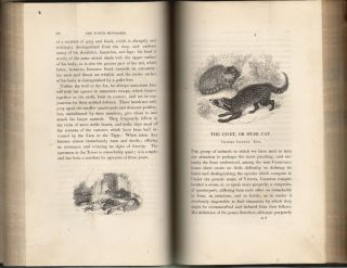 The Tower Menagerie: Comprising the Natural History of the Animals Contained in That Establishment with Anecdotes of Their Characters and History