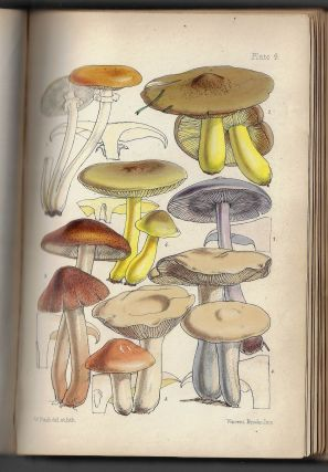 Outlines of British Fungology; Containing Characters of Above a Thousand Species of Fungi, and A...